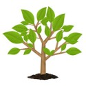 Growing Green Tree PSD