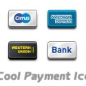 8 Cool Payment Icons