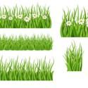 Green Grass PSD Elements