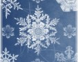 22 Beautiful Snowflake Brushes for Photoshop