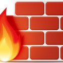 Network Firewall Icon