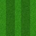 Seamless Green Grass Texture (PSD)