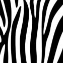 Zebra Stripe Background Pattern