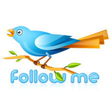 Twitter Bird Follow Me PSD