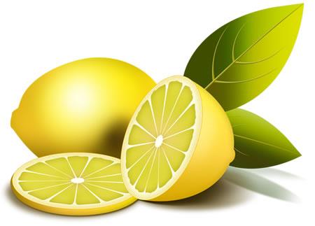 lemon vector free download - photo #46