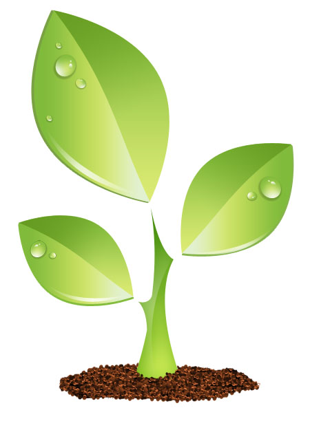 Green Plant Vector Icon