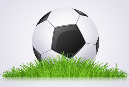 Black and White Soccer Ball Icon