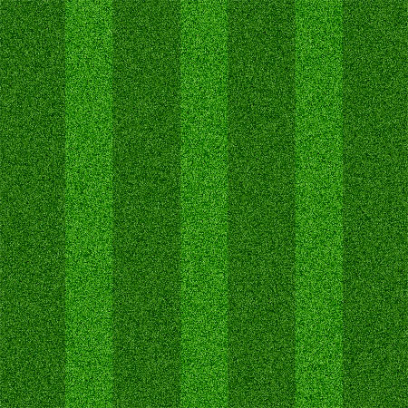 Seamless Grass Texture for Photoshop